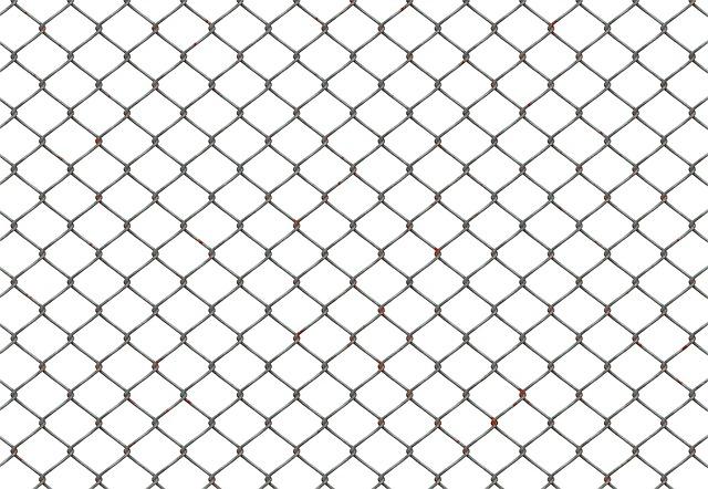 drátový plot